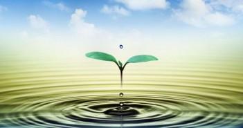 agua_es_vida