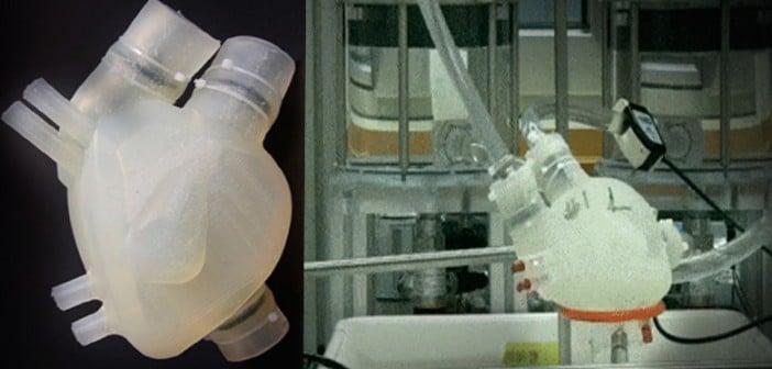 Científicos-suizos-crean-un-corazón-3d-que-flexible